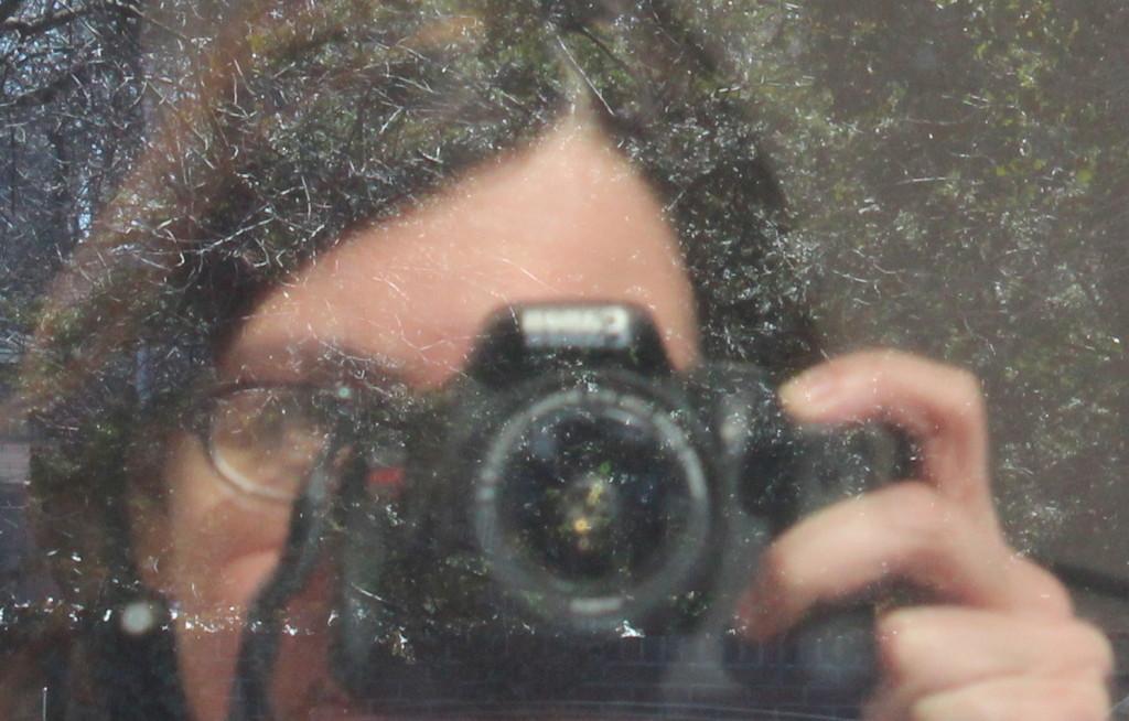 SEO photography content management